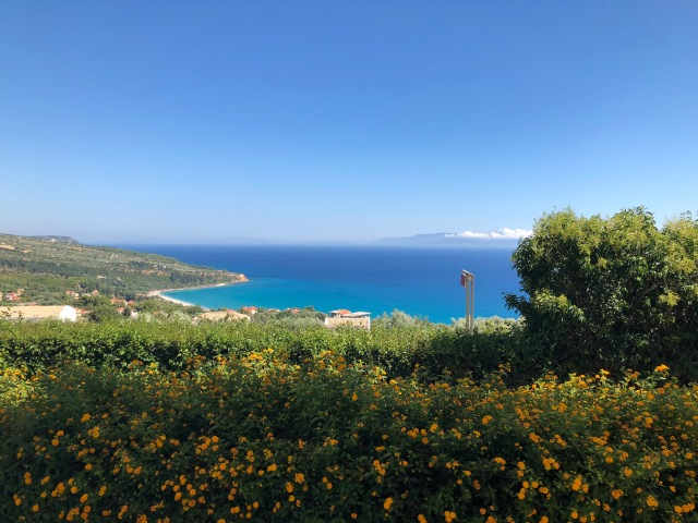 View from Andromeda, greenery with yellow flowers followed by blue sea and sky. Lourdas Kefalonia